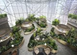 "Citi to hire in Singapore as it opens new office with a ""biophilic design"""